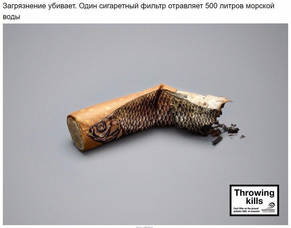 http://apsnyfishing.ru/uploads/images/2017/04/30/image.jpg