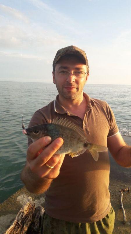 http://apsnyfishing.ru/uploads/images/2017/05/29/image.jpeg